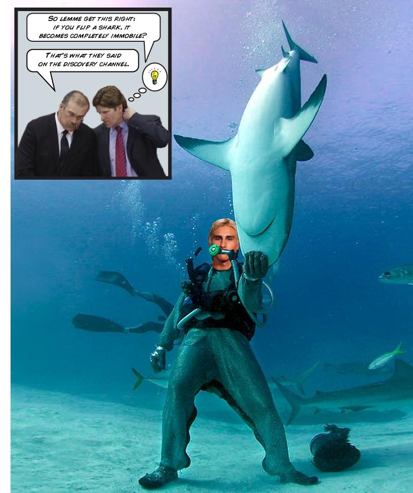 Flip Flips Shark