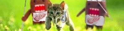 Kitten Signature
