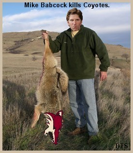 Mike Babcock Goes Coyote Hunting.