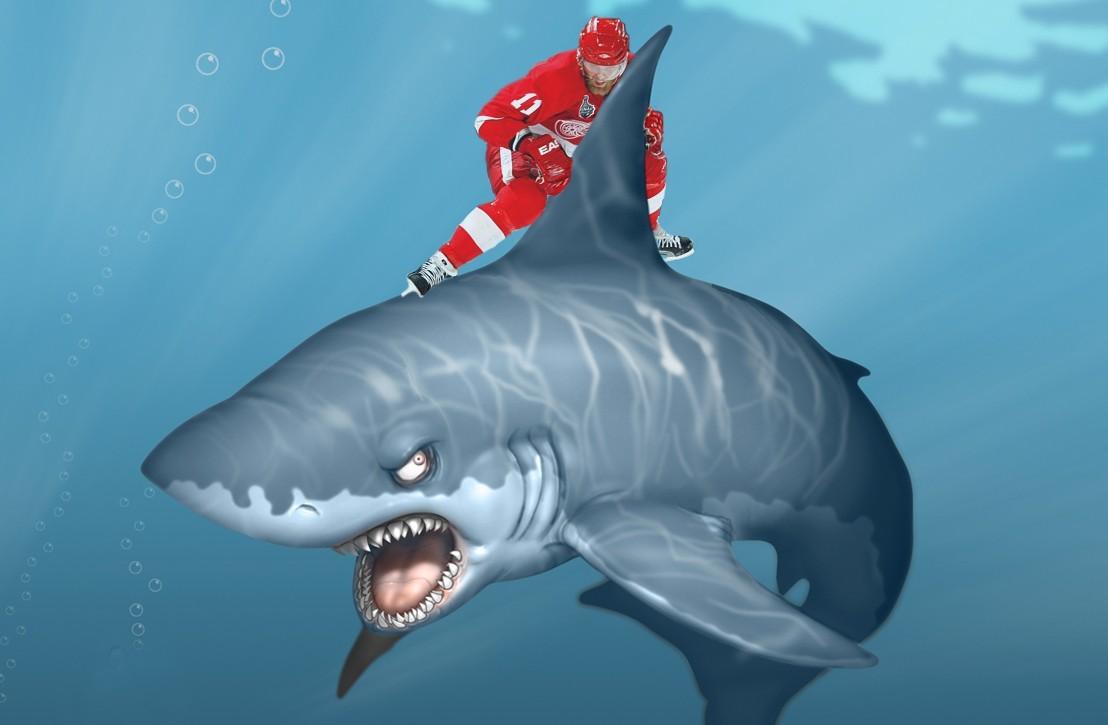clery shark.jpg