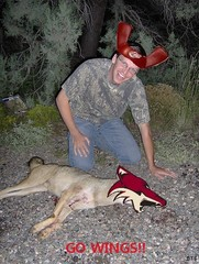 Wings Fans...The Coyotes Worst Enemy!