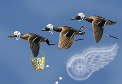 Flocking Golfers