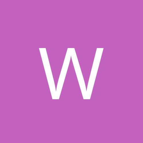 Wingman 033